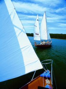 sailors adventure