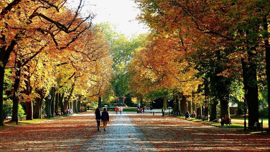 autumnal krakow