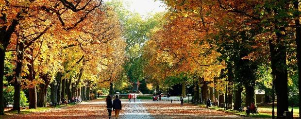 Golden Polish Autumn